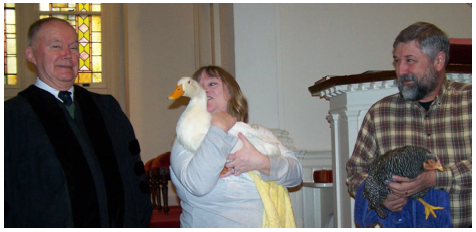 A duck and chicken visit the worship service